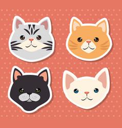 Cute cats pets friendly vector