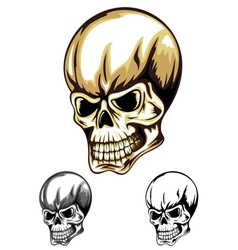 Skull color vector