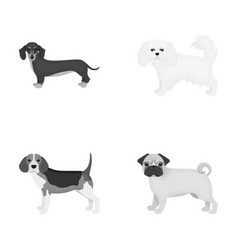 Dog animal domestic and other web icon in vector