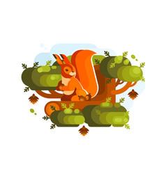 Cartoon squirrel with acorn vector