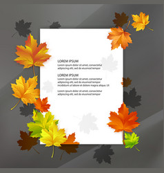white blank decorated with colorful autumn maple vector image