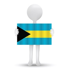 Flag of commonwealth of the bahamas vector