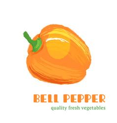 Fresh bell pepper isolated on white background vector