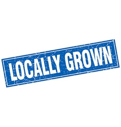 Locally grown blue square grunge stamp on white vector