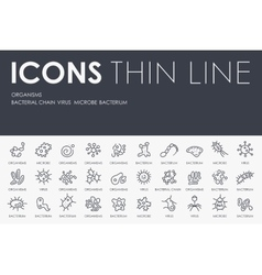 Organisms Thin Line Icons vector image vector image