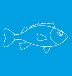 Sea bass icon outline style vector