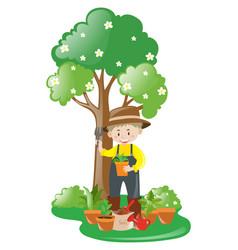 gardener working in the garden vector image