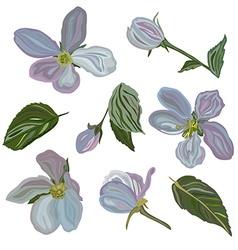 Hand drawn cherry blossom flowers set vector