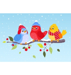 Colorful birds on winter scene vector image