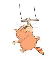Cute cat acrobat cartoon character vector