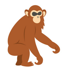 Dusky leaf monkey icon isolated vector