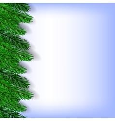 Fir Green Branches vector image vector image