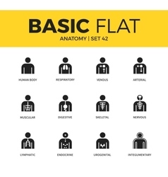 Basic set of anatomy icons vector