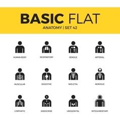 Basic set of anatomy icons vector
