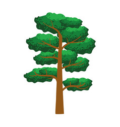 Pine tree element of a landscape colorful vector