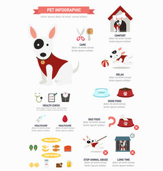 Dog infographic vector