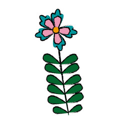Flower tropical flora beauty nature decoration vector