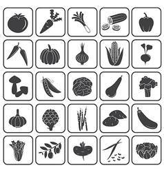 Basic Vegetables Icons Collection vector image
