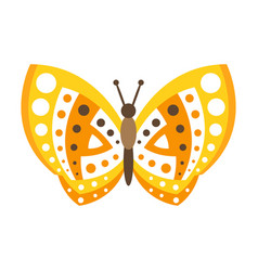 cute yellow butterfly with open wings colorful vector image