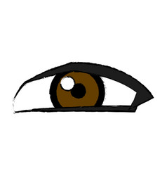 eye look watch vision optical icon vector image vector image
