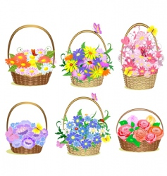 Baskets of flowers vector