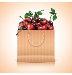 Many cherries in the paper bag vector