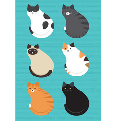 cute cats pattern vector image