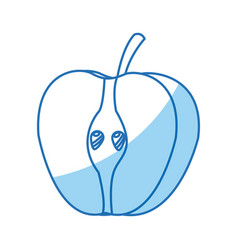 half apple fresh tasty fruit design vector image