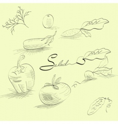 sketch with vegetables vector image
