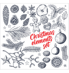 Vintage handdrawn christmas card elements vector