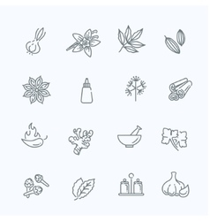 Web icon set - spices condiments and herbs vector image vector image