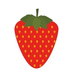 Silhouette colorful with strawberry fruit vector