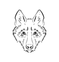 Grungy black and white wolf vector