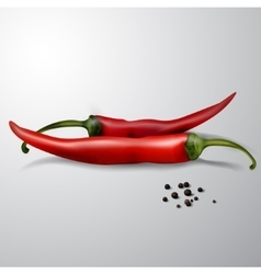 Two red hot chili peppers isolated vector