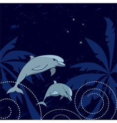 Dolphins and southern cross vector