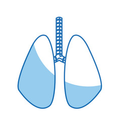 Lung human organ healthy line blue vector