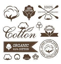 Cotton decoration elements vector