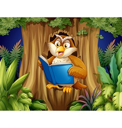 An owl reading a book at the tree vector image vector image