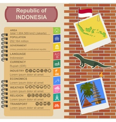 Indonesia infographics statistical data sights vector