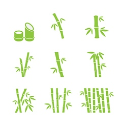 bamboo icon vector image vector image