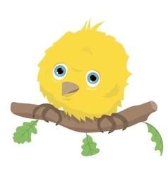 Cute bird on branch vector image