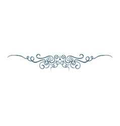 Tribal fashion ornament vector image