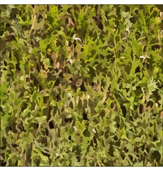 Hedgerow texture vector image vector image