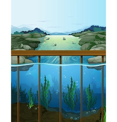 Nature scene with fish in the river vector