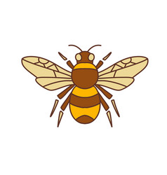 bumble bee icon vector image vector image