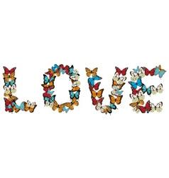Buttefly love vector