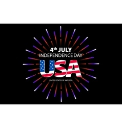 Independence day concept 4th July independence vector image vector image