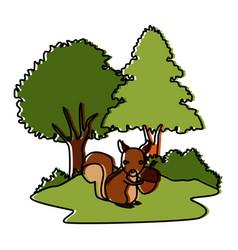 squirrel animal cartoon vector image vector image