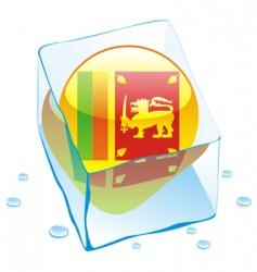 Sri Lanka flag vector image