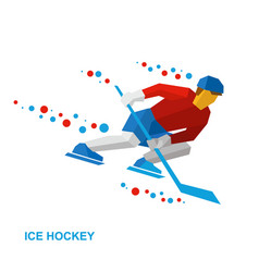 winter sports - ice hockey vector image